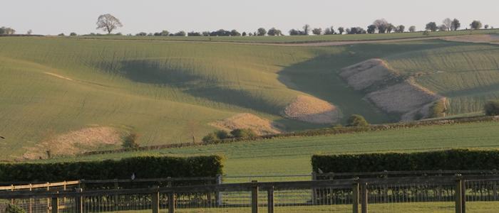Ridgeway View - photo credit Dave Buckland